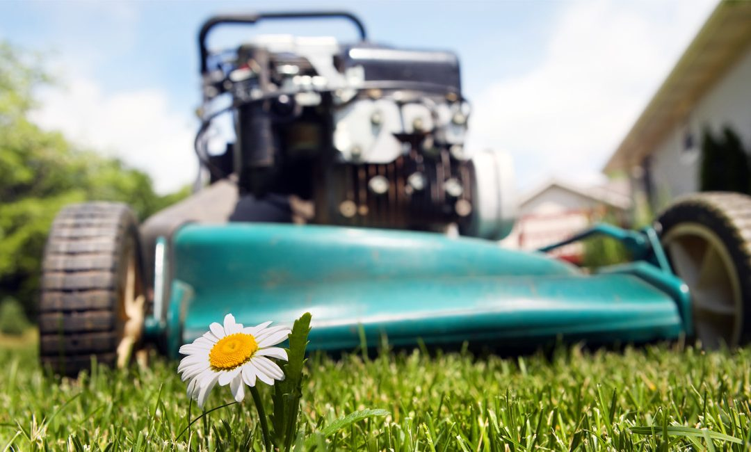 Does Direct Mail Still Work for Landscaping or Lawn Care Businesses ...